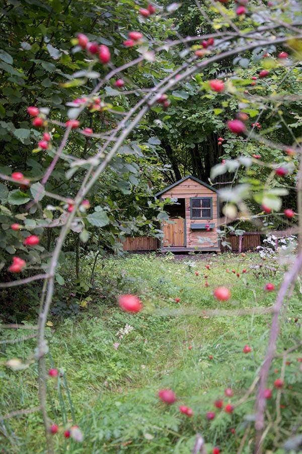 leśniczówka domek dla dzieci