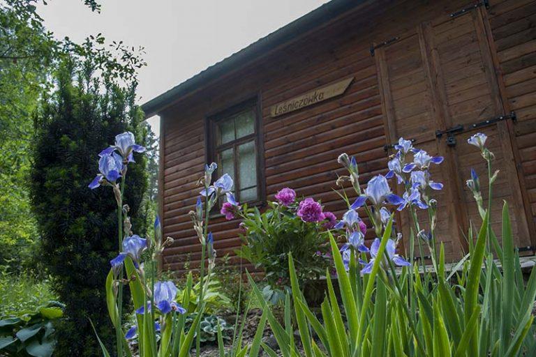 leśniczówka ogród